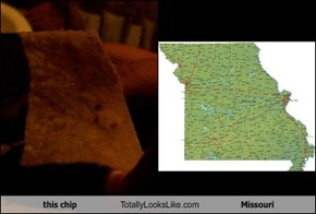 this chip Totally Looks Like Missouri