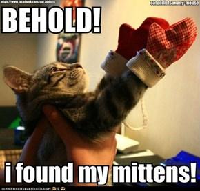 Kitten Mittens!