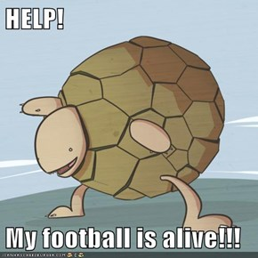 HELP!  My football is alive!!!