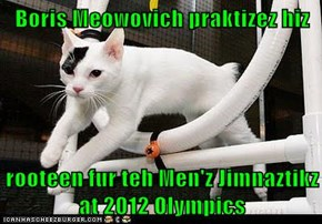 Boris Meowovich praktizez hiz   rooteen fur teh Men'z Jimnaztikz at 2012 Olympics