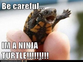 Be careful...  IM A NINJA TURTLE!!!!!!!!!