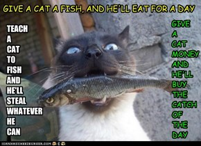 GIVE A CAT A FISH, AND HE'LL EAT FOR A DAY