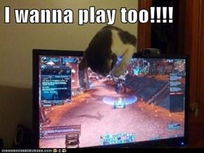 I wanna play too!!!!