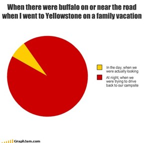 When there were buffalo on or near the road when I went to Yellowstone on a family vacation