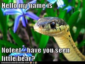 Hello my name is  Nofeet....have you seen little bear?
