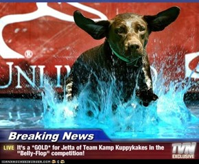 "Breaking News - It's a *GOLD* for Jetta of Team Kamp Kuppykakes in the ""Belly-Flop"" competition!"