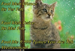 Fool Meh Wunce                                        Its Yer Falt, Fool Meh Twice                                     Its Mai Falt, Fool Me 9,999 Tymes Yew Are Teh Weaverman!