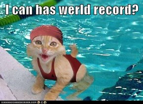 I can has werld record?