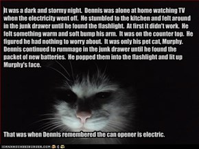 It was a dark and stormy night.  Dennis was alone at home watching TV when the electricity went off.  He stumbled to the kitchen and felt around in the junk drawer until he found the flashlight.  At first it didn't work.  He felt something warm and soft b