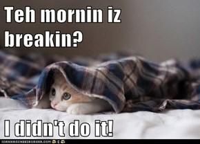 Teh mornin iz breakin?  I didn't do it!