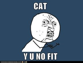 CAT               Y U NO FIT