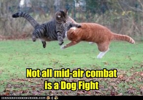 Not all mid-air combat is a Dog Fight