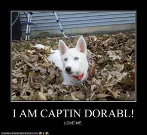 I AM CAPTIN DORABL!