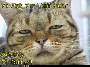 Ya Fink Yer Tuff Huh?  Aih Beg                           Ta Differ!!