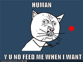 HUMAN    Y U NO FEED ME WHEN I WANT