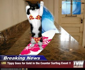 Breaking News - Tippy Goes for Gold in the Counter Surfing Event !!