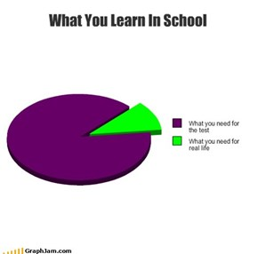 What You Learn In School
