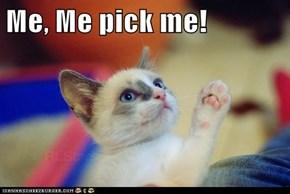 Me, Me pick me!