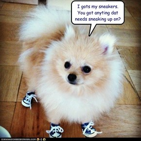 I gots my sneakers.  You got anyting dat needs sneaking up on?