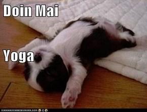 Doin Mai Yoga