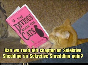 Kan  we  reed  teh  chaptur  on  Selektive Shedding  an  Sekretive  Shredding  agin?