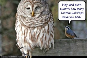 Hey lard butt, exactly how many Tootsie Roll Pops have you had?