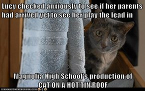 Lucy checked anxiously to see if her parents had arrived yet to see her play the lead in  Magnolia High School's production of                    CAT ON A HOT TIN ROOF