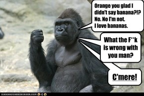 Gorillas do not get knock-knock jokes.