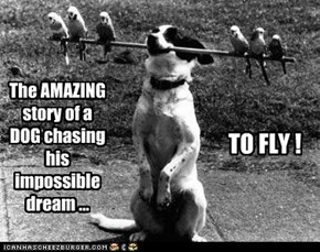 Or maybe he was just chasing a stick with six budgies glued onto it.