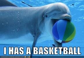 I HAS A BASKETBALL