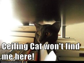 Ceiling Cat won't find me here!