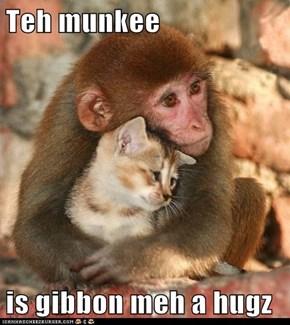 Teh munkee  is gibbon meh a hugz