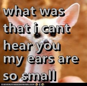what was that i cant hear you  my ears are so small