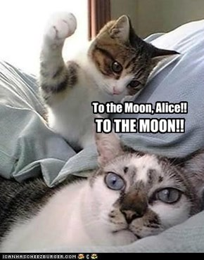 To the Moon, Alice!!