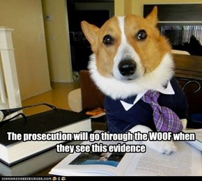 The prosecution will go through the WOOF when they see this evidence