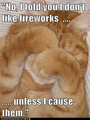 """No, I told you I don't like fireworks  ....  ..... unless I cause them."""