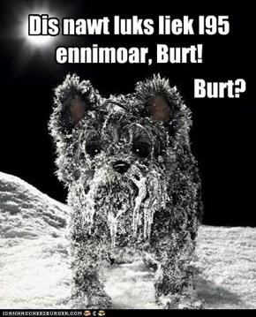 Burt's on erf.