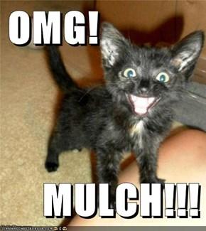 OMG!  MULCH!!!