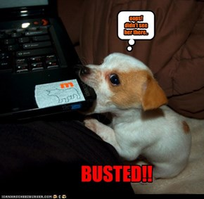 BUSTED!!