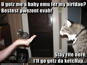 U gotz me a baby emu fer my birfdae? Bestest pwezent evah!  Stay rite dere,                                                  I'll go getz da ketchup...