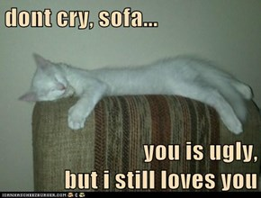 dont cry, sofa...  you is ugly,                             but i still loves you
