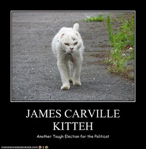 JAMES CARVILLE  KITTEH