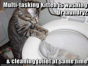 Multi-tasking Kitteh is washing Ur laundryz  & cleaning toilet at same time