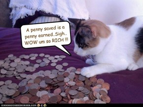 A penny saved is a penny earned..Sigh.. WOW um so RICH !!!