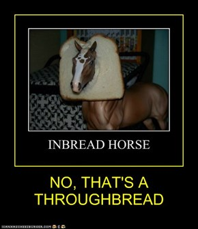 NO, THAT'S A THROUGHBREAD