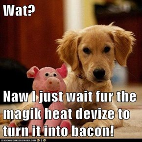 Wat?  Naw I just wait fur the magik heat devize to turn it into bacon!