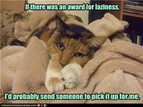 If there was an award for laziness,