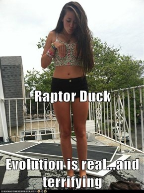 Raptor Duck Evolution is real...and terrifying