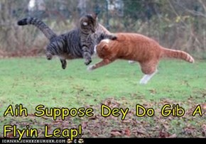 Aih Suppose Dey Do Gib A Flyin Leap!