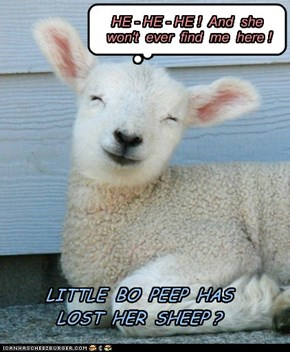"NOT-""A POOR LITTLE LAMB""!"
